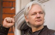 Die Auslieferung von Assange würde einen gefährlichen Präzedenzfall schaffen - Marjorie Cohn